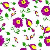 Texture des fleurs image libre de droits