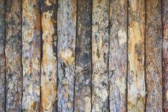 Texture des planches du bois Photos libres de droits