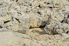 Texture des roches en pierre naturelles d'origine volcanique d'une partie des régions côtières de l'île de la Chypre photographie stock libre de droits