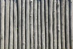 Texture des rondins en bois Photo libre de droits