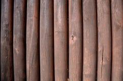 Texture des tiges en bois Images stock