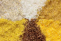 Texture of different dry cereals. Texture of six dry cereals: barley groats, rice, wheat groats, millet, buckwheat, corn grits stock photo