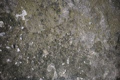 Texture dirty grey concrete. Royalty Free Stock Photography