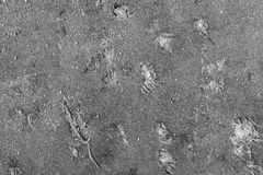 Texture of a dirty rag gray color Royalty Free Stock Photos