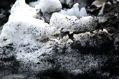 Texture of  dirty snow Royalty Free Stock Photo