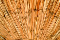 Texture of dried beautiful yellow straw, hay, twigs in the form of a fan. The background. stock photo