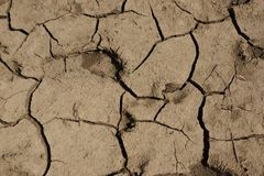 the texture of dried clay and sandy soils cracks stock photos