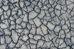 Texture  dried mud closeup Royalty Free Stock Photo