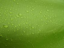 Texture: a drop of water on a green fabric. Water-repellent effect. Waterproof textile stock photos