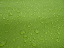 Texture: a drop of water on a green fabric. Water-repellent effect. Waterproof textile royalty free stock photography