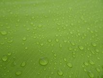 Texture: a drop of water on a green fabric. Water-repellent effect. Waterproof textile royalty free stock photo