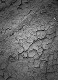 Texture drought parched earth Stock Image
