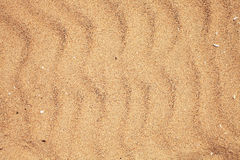 Texture of dry beach sand Royalty Free Stock Photo