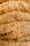 Texture of dry coconut tied together Stock Photo