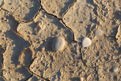 Texture dry cracked earth Stock Photo