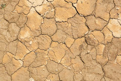 Texture of dry desert, background Royalty Free Stock Photography