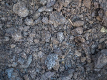 Texture of dry humus close-up. Cultivated soil, dirt ground, brown land background. Organic agriculture, gardening. Close-up dry humus. Cultivated soil, dirt Royalty Free Stock Images