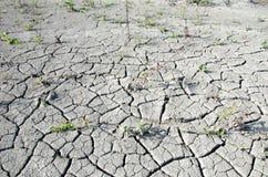Texture dry land Stock Photo