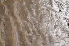 Texture of dry land, drought Stock Photography