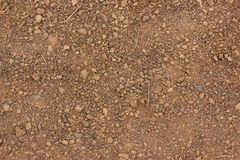 Texture of dry red clay with stones close-up. Stock Photo