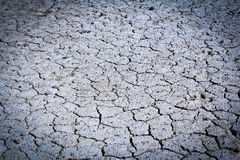 Texture of dry soil Royalty Free Stock Image