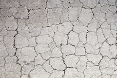 Texture of dry soil. Drought, the ground cracks, no water, lack of moisture ground texture Royalty Free Stock Photo