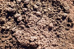 Texture of the dry soil with high clay content. Background of dried black soil in the scorching sun Royalty Free Stock Photography