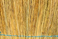 Texture of dry straw background stock images