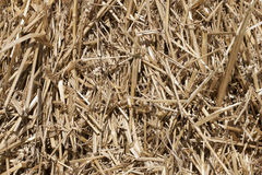 Texture of dry straw in the bale. background. Royalty Free Stock Photos