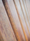 Texture of dry wood Stock Image