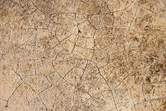Texture du fond en pierre Photographie stock libre de droits