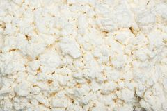Texture du fromage blanc image stock