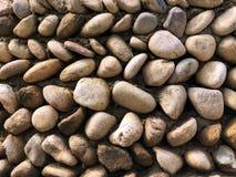 Texture du mur en pierre Gravier ovale Photographie stock