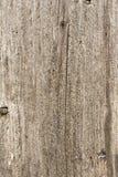 Texture du vieil arbre avec les fissures longitudinales, surface de bois superficiel par les agents antique, fond abstrait photographie stock libre de droits
