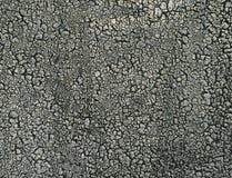 Texture du vieux ruberoid Photo libre de droits