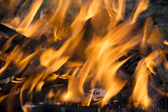 Texture elements of fire flames Stock Images