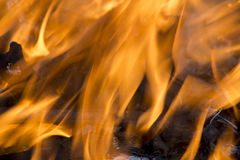 Texture elements of fire flames Stock Photography