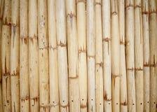 Texture en bambou images libres de droits