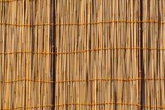 Texture en bambou Photographie stock libre de droits