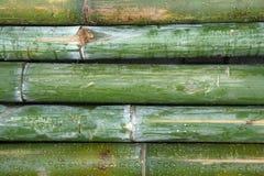 Texture en bambou de configuration Images stock