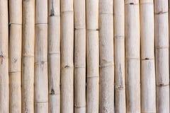 Texture en bambou de fond de mur Photographie stock