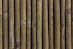 Texture en bambou de mur Images stock