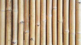 Texture en bambou en gros plan et ombres latérales avec les milieux naturels de modèles pour le concepteur, extérieur d'intérieur Photo stock