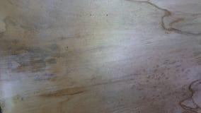 Texture en bambou jaune de feuille Photographie stock libre de droits