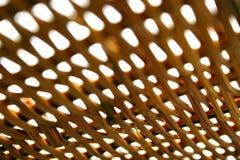 Texture en bambou, profondeur de zone extrême Photo stock