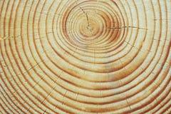 Texture en bois. Photographie stock