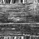 Texture en bois images stock