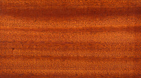 Texture en bois avec le modèle en bois naturel photographie stock