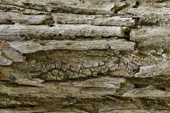 Texture en bois avec les modèles naturels, vieux panneaux de fond, le b Photos stock