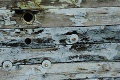 Texture en bois avec Teal Accents photographie stock libre de droits